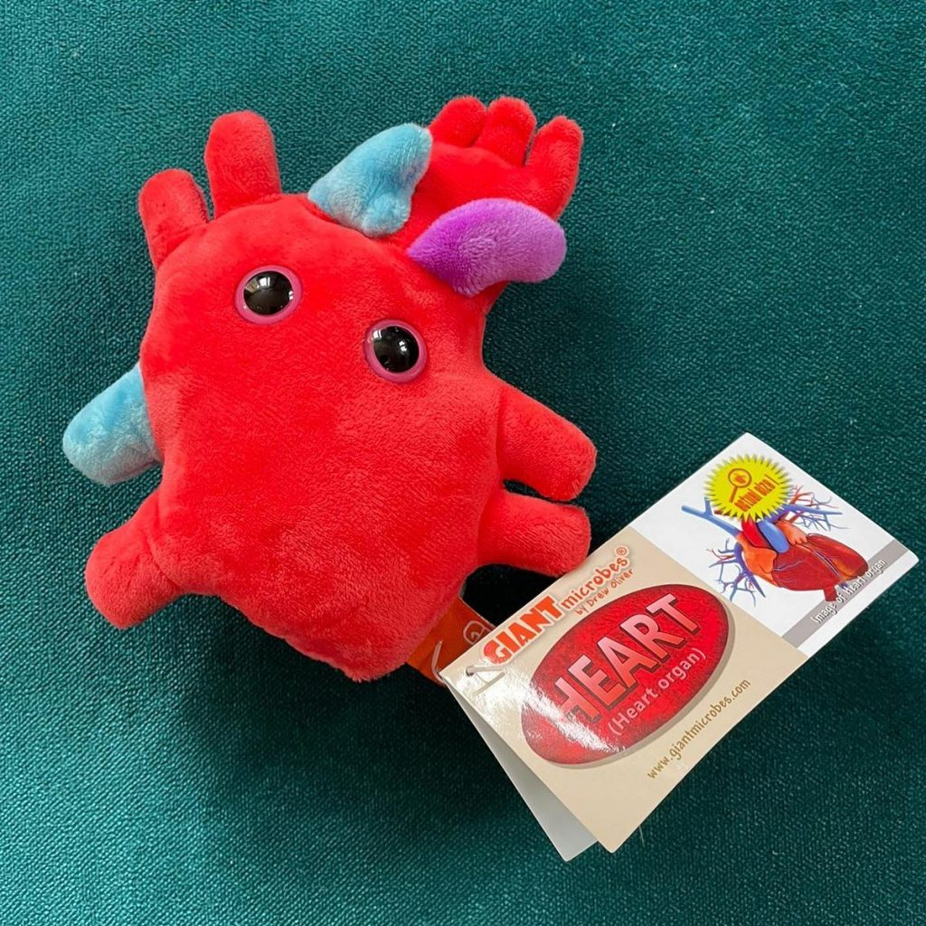 An anatomical heart shaped cuddly toy, with 2 goggly eyes, and a label on that reads 'Giant Microbes.'